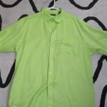 IMG_1507 green linen